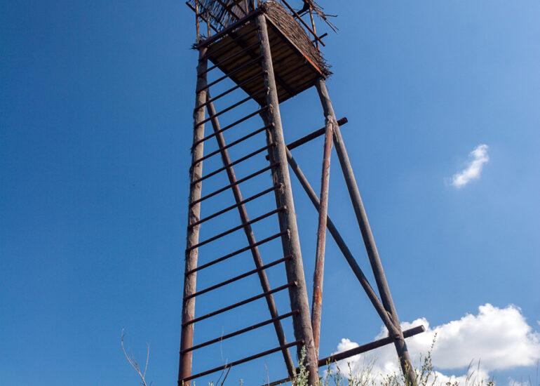 Вежа на кургані