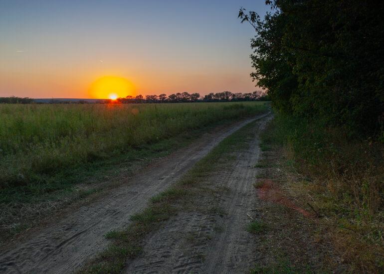 Дорога в полі