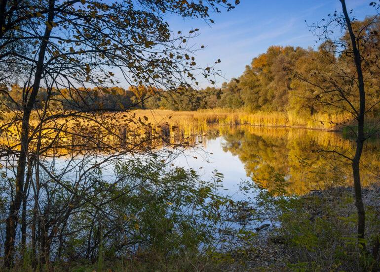 Заплавне озеро