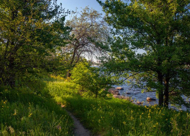 Прогулянка берегом