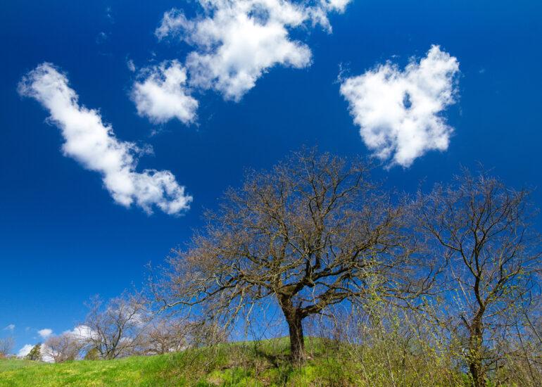 Обійми хмар