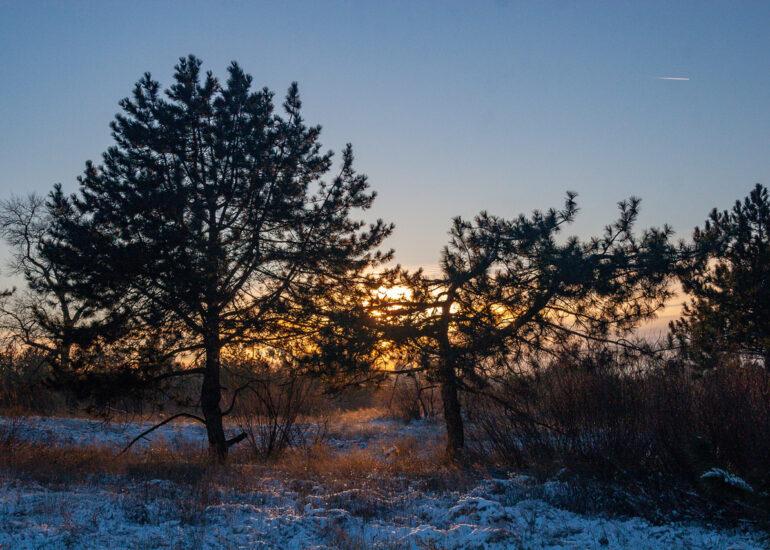 Сніжний захід сонця