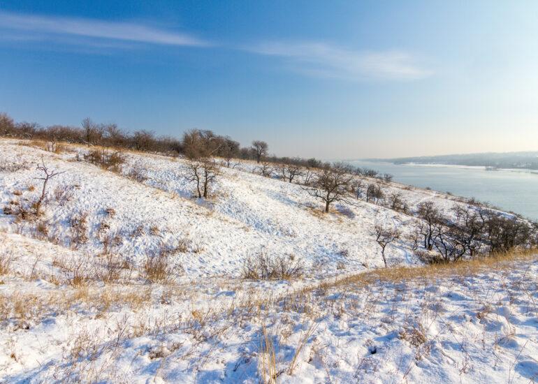 Під ковдрою зими