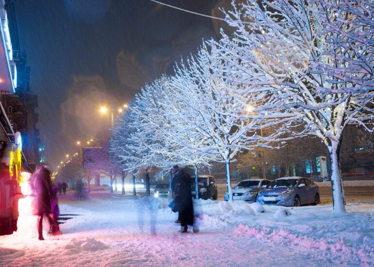 В сніжному вбранні