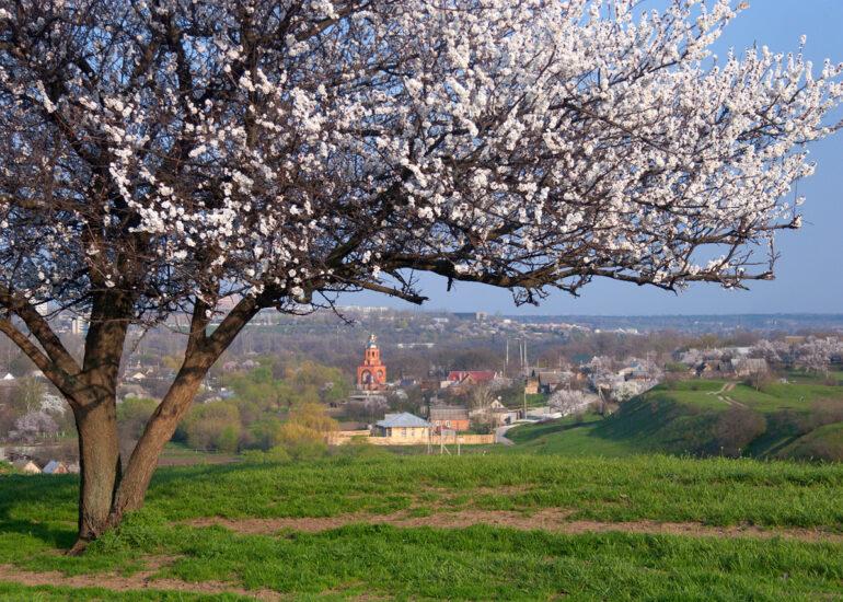 Весна на Верхній Хортиці