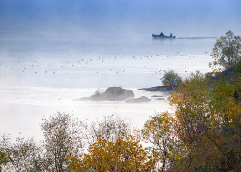 Випливаючи з туману